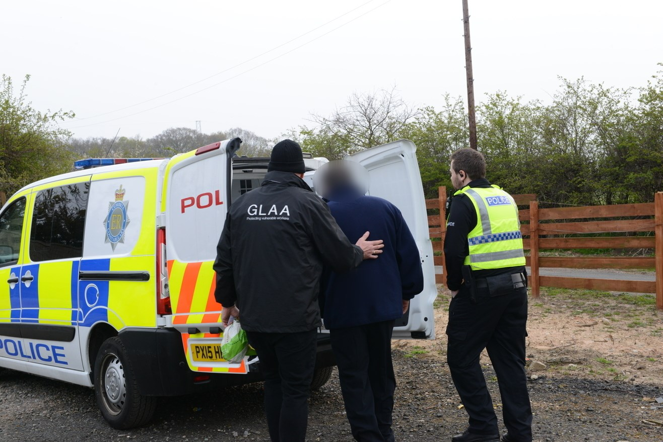 A GLAA worker escorting a suspect into a police van